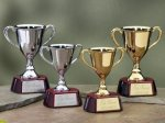 Trophy Cups with Piano Finish Wood Base Achievement Awards
